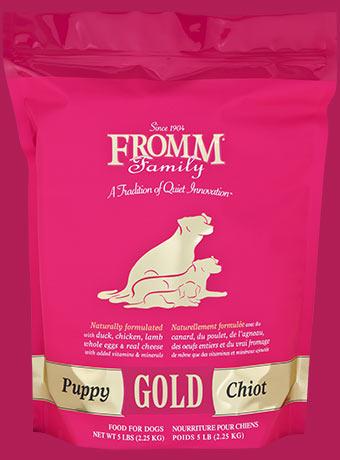 gold-dog-dry-puppy